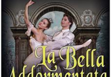 la_bella_addormantata- locandina